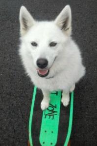 Mia Skateboard